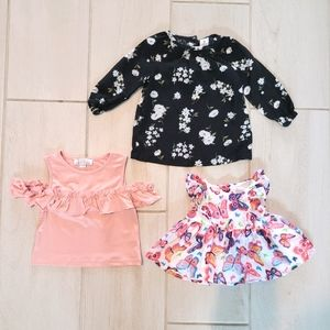 Set of 3 Baby Girl Tops & Dress. Size 6, 9, 9-12